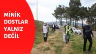 Sultanbeyli Belediyesi Minik Dostları İhmal Etmiyor