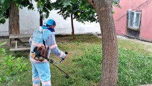 Üsküdar'da Dezenfekte Çalışmaları