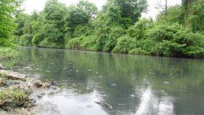 Beykoz Belediyesi'nden Riva Deresi Açıklaması