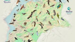 """""""Beykoz'un Kuşları Ve Tabiat Alanları"""" Kitabı Çıktı"""