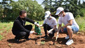 Tuzlalı gençler, tohumları toprakla buluşturdu