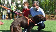 Pendik Belediyesi Neşeli Patiler Köpek Eğitim Parkı'nı hizmete açtı