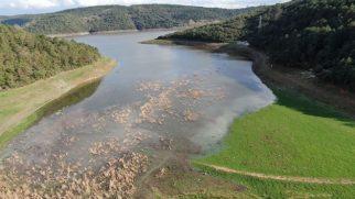 İstanbul'da baraj doluluk oranlarında son durum: Yüzde 31'i aştı