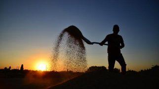 Çiftçiye destek ödemesi bugün başlıyor