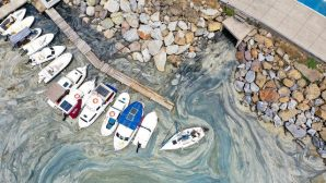 Marmara'yı kirleten işletme ve gemilere 14,8 milyon lira ceza