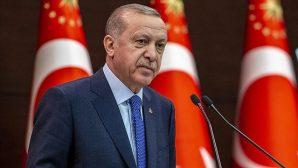 Erdoğan'dan 'Hayvan Hakları Yasası' çalışmalarında süreci hızlandırma talimatı