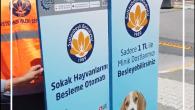Sultanbeyli Belediyesi sokak hayvanları için mamamatikler yerleştiriyor