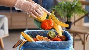 Evde gıda israfını birkaç basit önlemle engelleyin